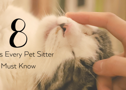 8 Things Every Pet Sitter Must Know