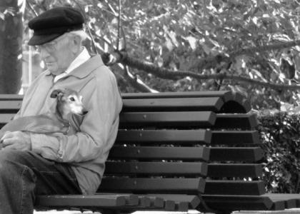 Health Benefits of Dogs for Seniors